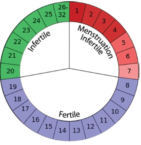 Ovulation and Pregnancy Prevention