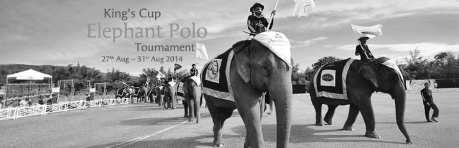 2014 King's Cup Elephant Polo; Packing It's Trunks and Moving to Bangkok