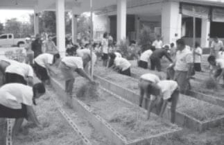 Organic Gardening at Bo Fai School