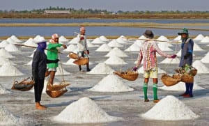 Petchaburi HM the Queen Encourages 'Sea Farm' Practice
