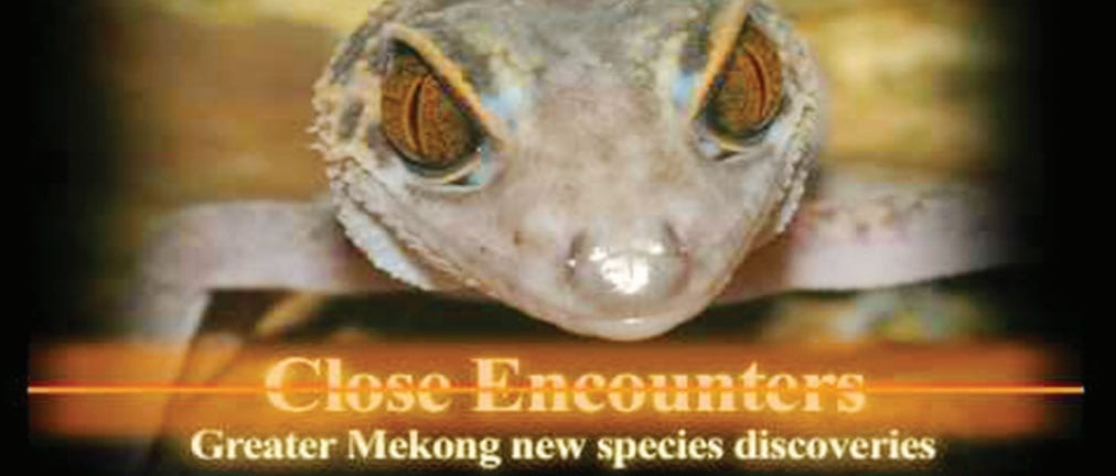Greater Mekong over 100 new species discovered