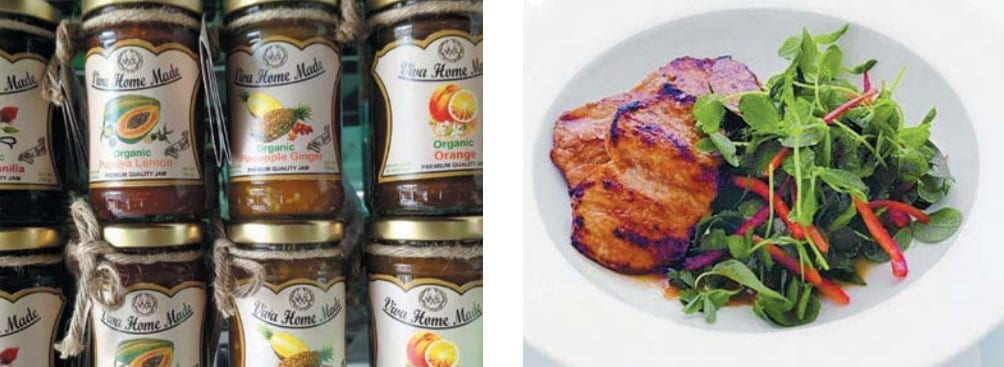 OPF Organic and Premium Food