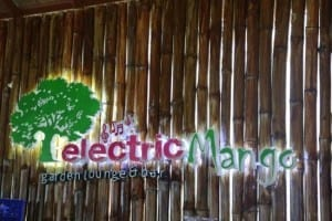 Electric Mango: Try our promotion