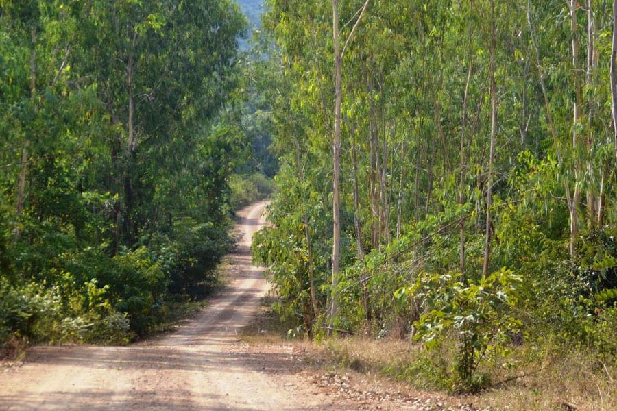 Trash Hero Hua Hin Takes On Pranburi Forest Park