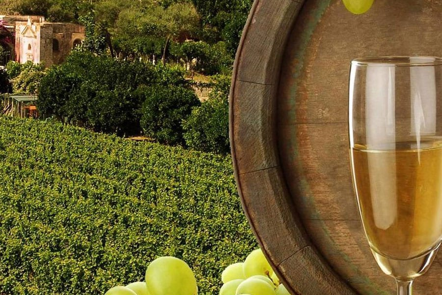 Wine Dinner with Beringer Vineyard