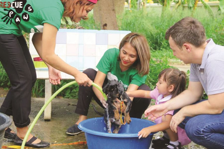 Banyan The Resort Hua Hin Supporting Rescue Paws