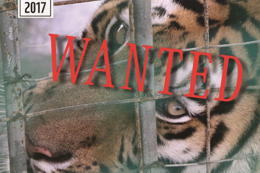 Golden Triangle is 'Ground Zero' for Wildlife Trafficking - WWF