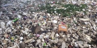 Tourists Leave Garbage Behind After New Year Holidays