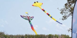 Flying High at the 2018 Thailand International Kite Festival