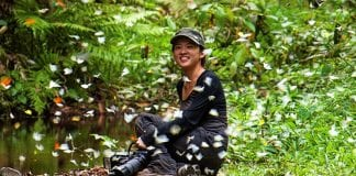 Add Some Colour to Your Life at Kaeng Krachan National Park