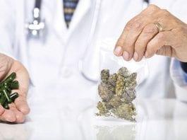 Cabinet Green-lights Medical Cannabis