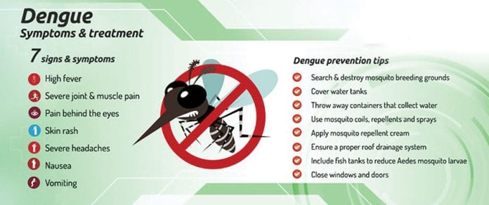 Dengue Season – Defend Your Domain