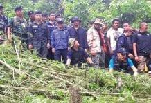 Kaeng Krachan Cannabis Plantation Discovered