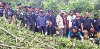 Kaeng Krachan Cannabis Plantation Discovered