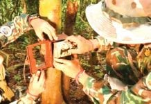 Anti-poaching Cameras Installed at Kaeng Krachan