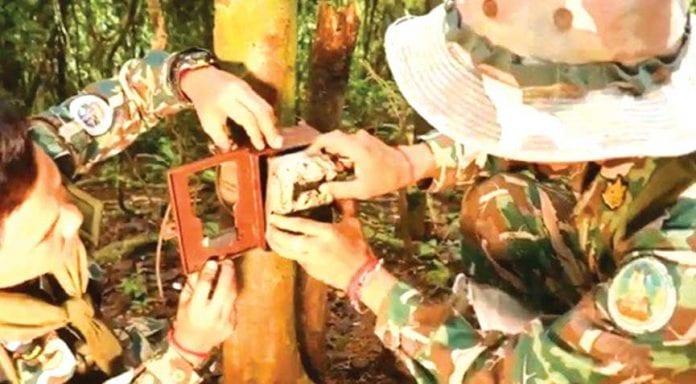 Anti-poaching Cameras Installed at Kaeng Krachan