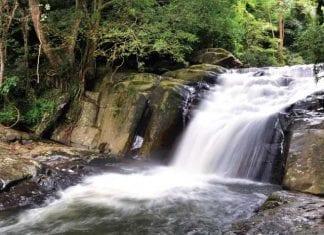 Kaeng Krachan National Park Open for Visitors