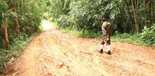Repairs to Khao Panern Thung Road Provoke Environmental Concerns