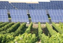 Solar Power for Thailand