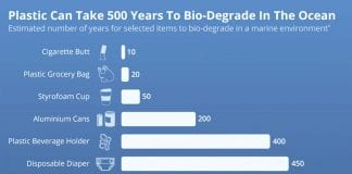 The Long Life of Plastics in the Ocean
