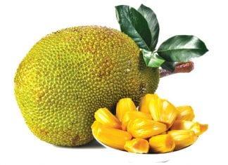 It's not a durian; it's a jackfruit!