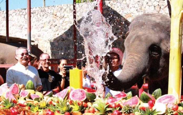 The National Thai Elephant Day