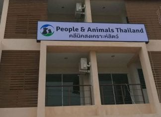 "Thailand's ""AnimalFriendly"" Clinic All Set Up"