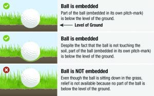 The Pro's Getting it Wrong – Relief for an Embedded Ball