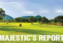 Majestic's report