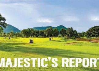 Majestic's report