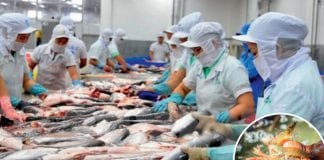 Raising the standard of Thai Aquatic Products