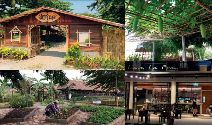 The Zaithong Organic Farm & Cafe and the Charming Pran Sea Side